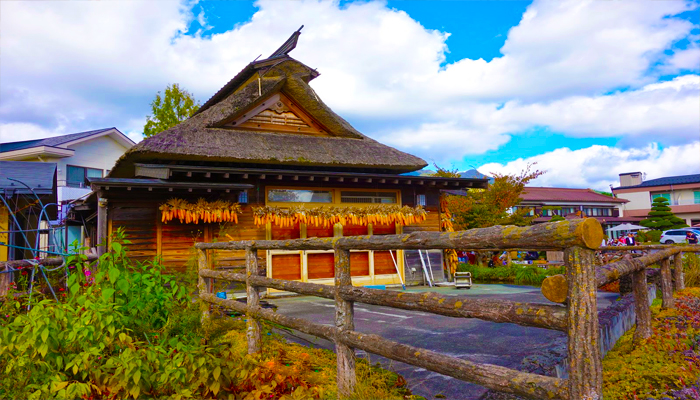 Những dàn ngô phơi trước nhà như một phần truyền thống của làng cổ Oshino Hakkai.