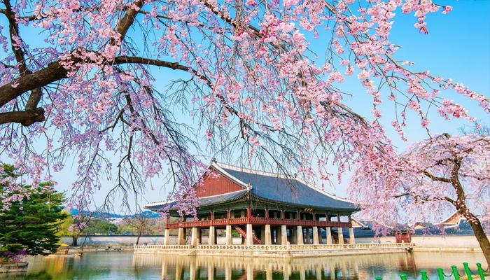 Hàn Quốc có lúc tấp nập ở những khu chợ, nhưng có lúc lại rất thanh bình ở những địa điểm tuyệt đẹp thế này. Nguồn: nucuoimekong