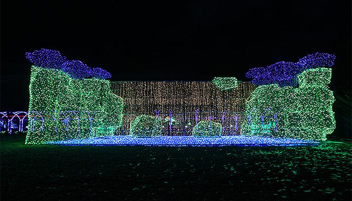 Toàn bộ khung cảnh tại Jeju Light Garden đều được làm từ rất nhiều chiếc đèn led phát sáng.