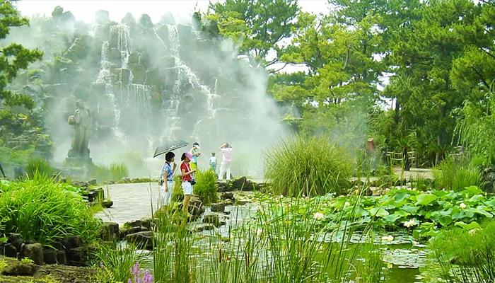 Khung cảnh ở công viên Hallim đẹp như tranh vẽ.