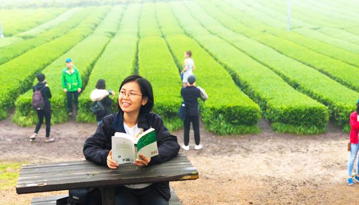 Chụp ảnh bên cánh đồng trà xanh luôn là hoạt động được các bạn trẻ yêu thích khi đến O'sulloc.