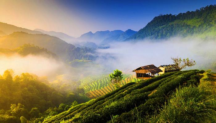 Khung cảnh thiên nhiên của Chiang Mai.