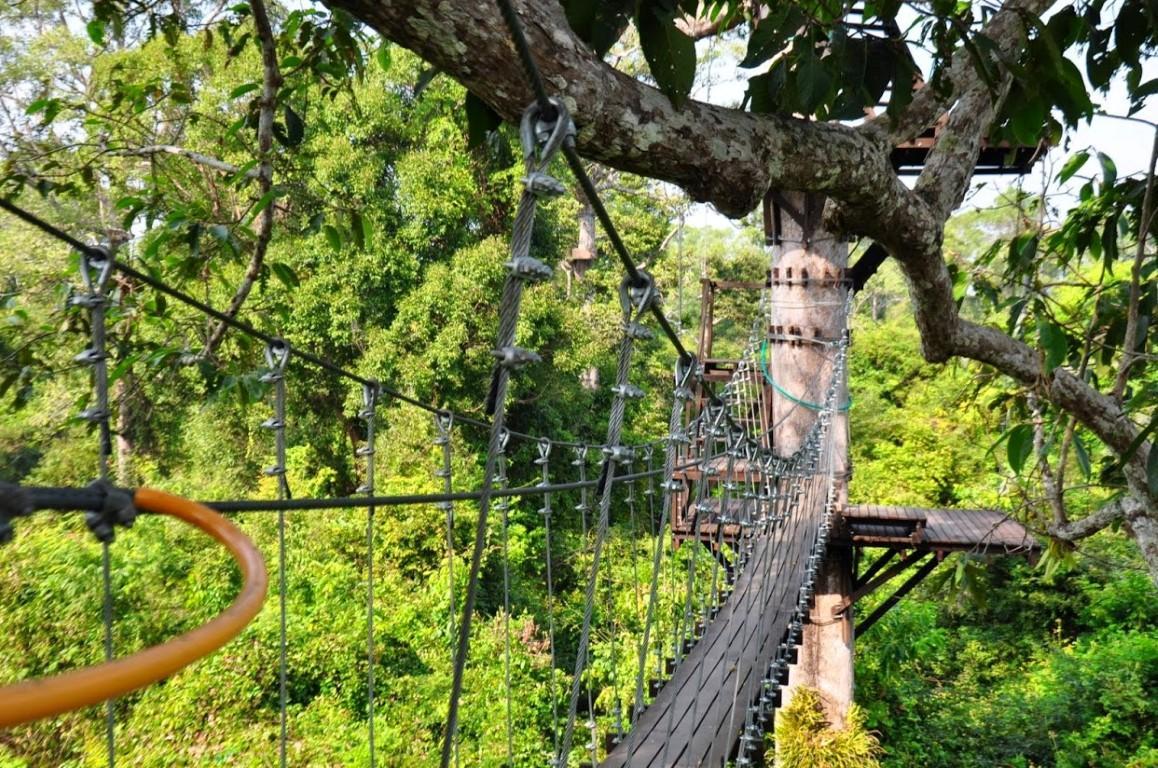 Thử thách Chiang Mai đầy mạo hiểm.