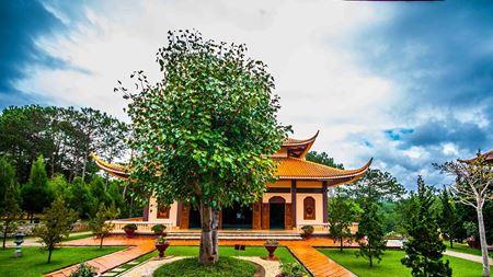 Hình đại điện của danh mục Thiền viện Trúc Lâm
