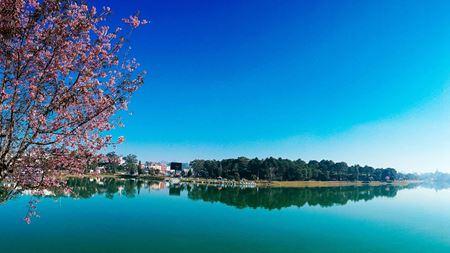 Hình đại điện của danh mục Hồ Xuân Hương