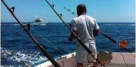 Hình của Tour câu cá Koh Samui (cả ngày)