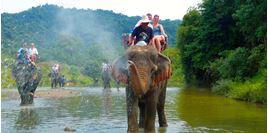 Hình của Tour Safari Adventure Koh Samui nửa ngày