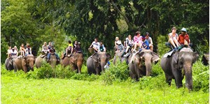 Hình của Tour du lịch sinh thái và ngắm cảnh Koh Samui