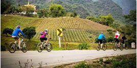 Hình của Tour xe đạp Chiang Rai (nửa ngày)