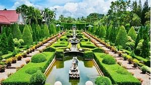 Hình của Tour tham quan Nong Nooch Tropical Garden Pattaya