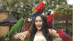 Hình của Vé Bali Bird Park