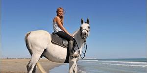 Hình của Tour cưỡi ngựa khám phá phong cảnh Boracay