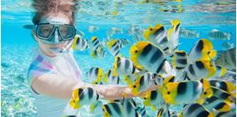 Hình của Lặn biển khám phá biển xanh Cebu cho người mới bắt đầu