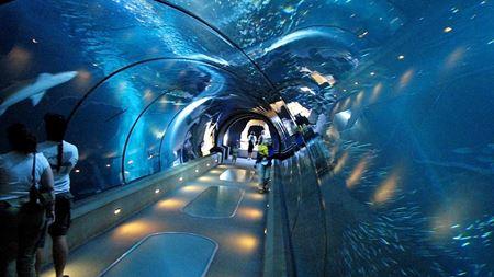 Hình đại điện của danh mục Discovery tunnel Boracay - Đường hầm dưới nước Boracay