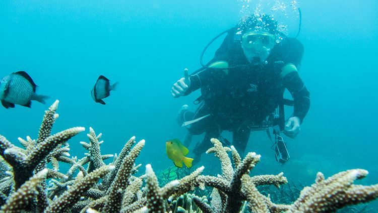 Khóa Học Lặn Biển Nâng Cao Tại Nha Trang