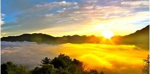 Tour Alishan Mountain - Khám Phá A Lý Sơn