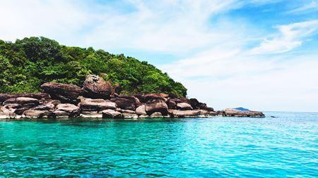 Hình đại điện của danh mục Tour 4 đảo Nha Trang