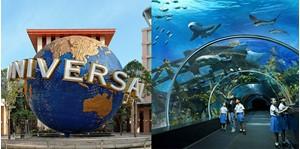 Hình của COMBO vé Universal Studios Singapore - SEA Aquarium