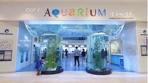 Hình của Vé COEX Aquarium