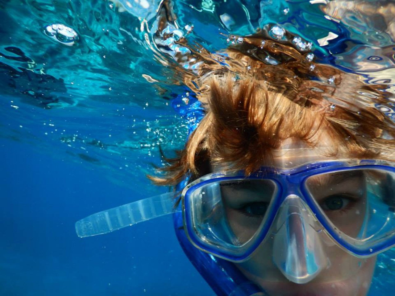 Lặn với ống thở hoặc lặn bình hơi tại Blue Cavern