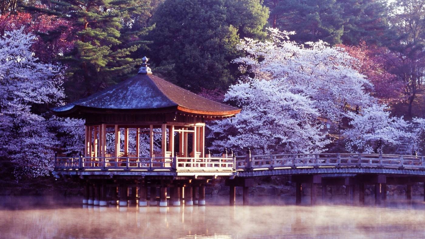 Hình đại điện của danh mục Nara