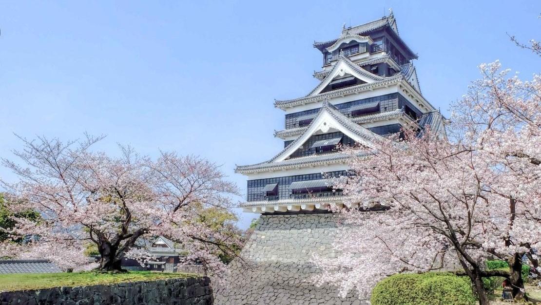 Hình đại điện của danh mục Kumamoto