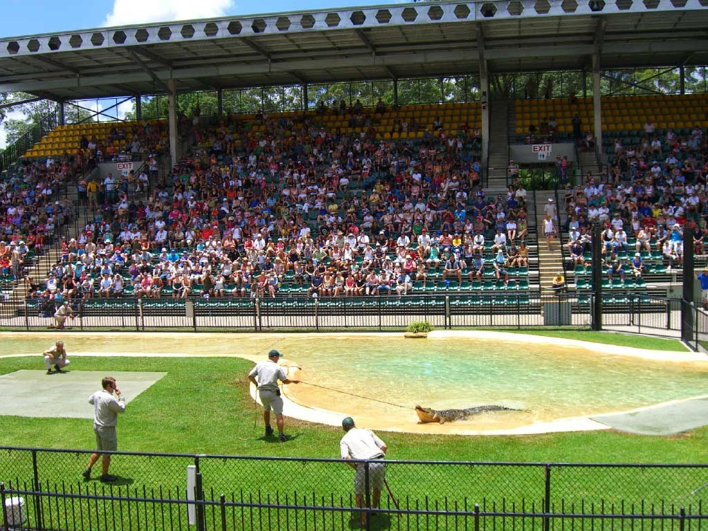 Australia Zoo with Transfers from Brisbane