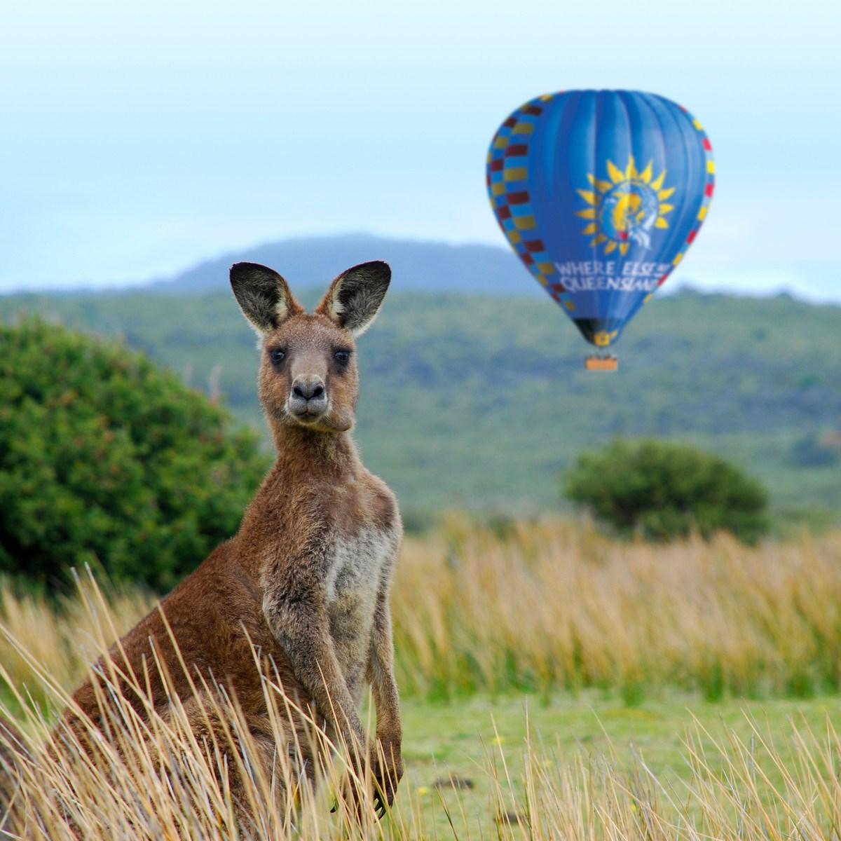 Bay khinh khí cầu ở Cairns
