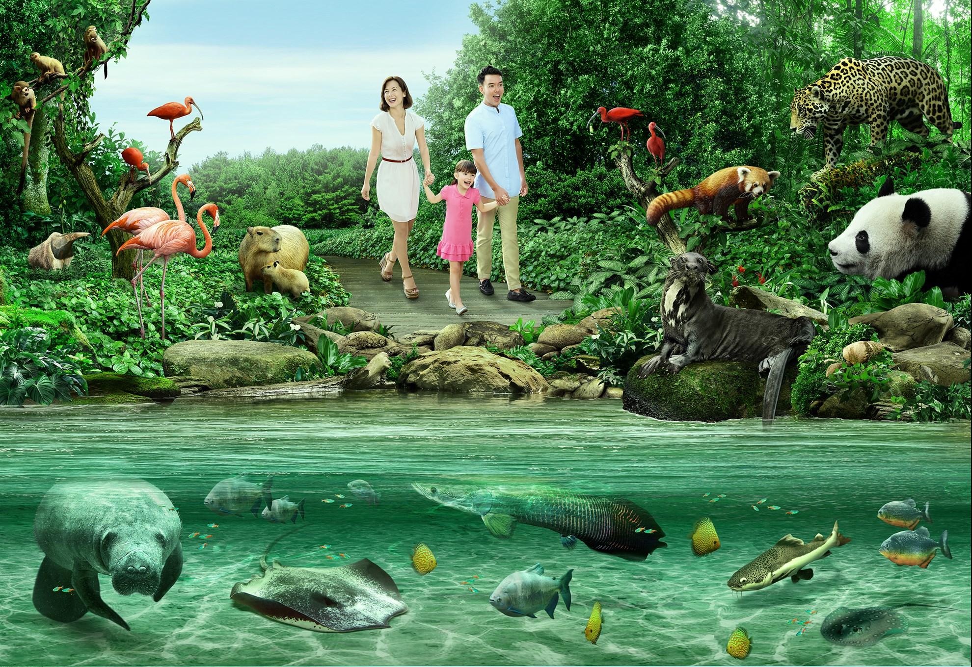 COMBO: Vé  tham quan Singapore River Safari + Rainforest Lumina tại Vườn thú Singapore