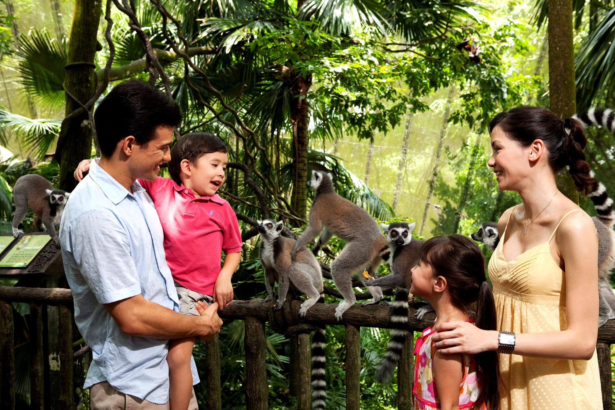 Dịch vụ trung chuyển bằng xe Bus đến Trung tâm Bảo tồn Động vật Hoang dã Singapore (Wild Life Reserves Singapore)
