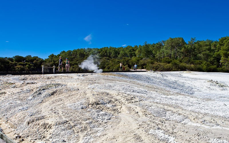 Half-day Geothermal Wonderland Tour