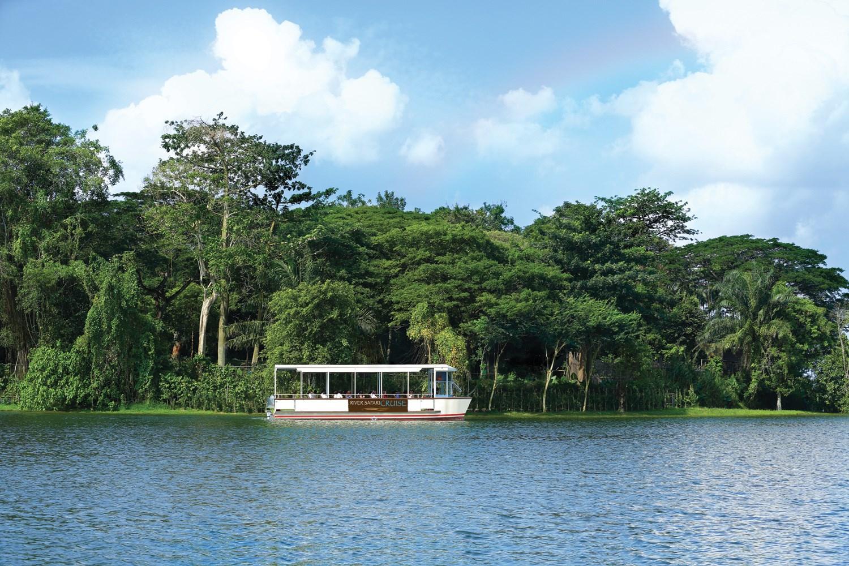 Tham quan Singapore River Safari, có đưa đón 2 chiều
