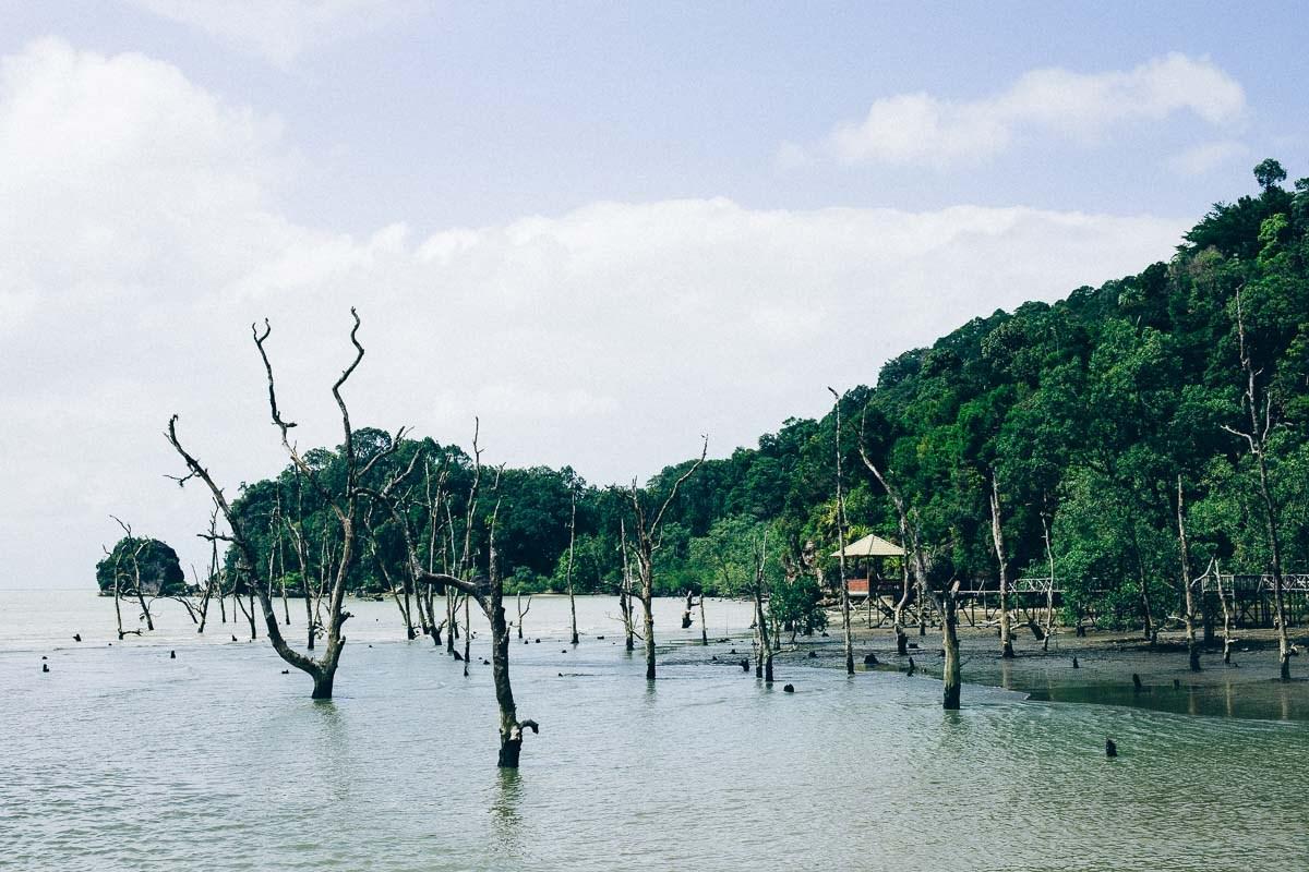 Tour Tham quan Công viên Quốc gia Bako và Ngắm các Tạo tác đá trên Biển