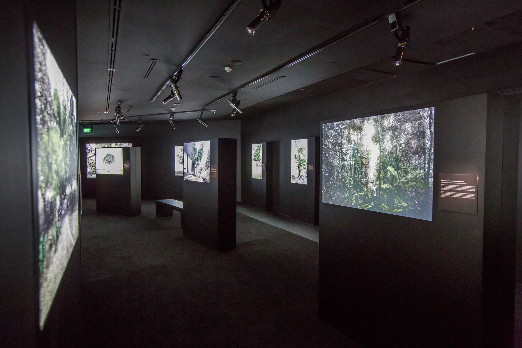 Vé tham quan Bảo tàng Quốc gia Singapore