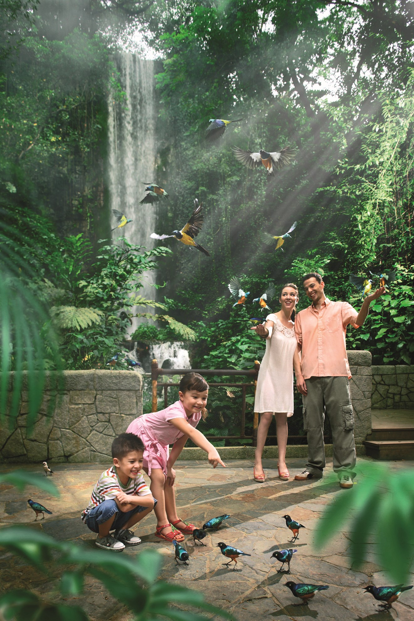Vé tham quan vườn chim Jurong