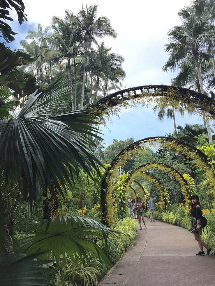 Vé Tham quan Vườn Lan Quốc gia