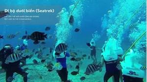 Hình của Tour Seatrek Cù Lao Chàm - đi bộ dưới đáy biển 1 ngày